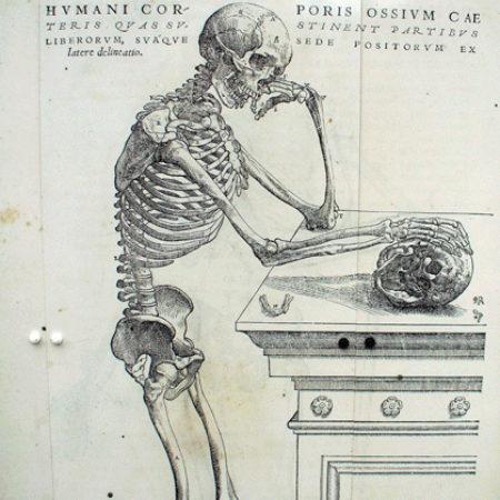 Vesalius engraving