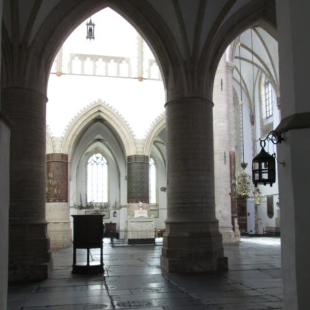 Fig 6 Haarlem St Bavo IMG 3095